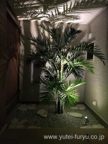 リゾート新築外構 人工植物ライトアップ