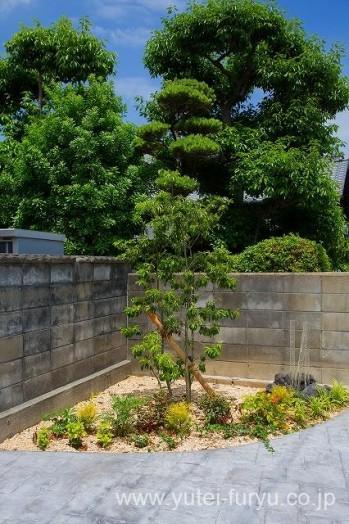 メンテナンスフリーの庭 植栽