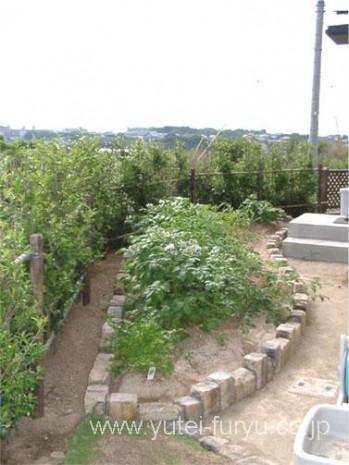 古窯レンガで囲った菜園