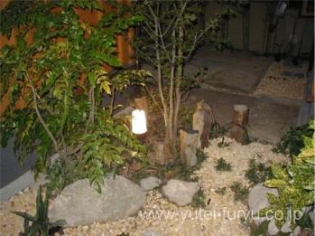 和風の庭をライトアップ