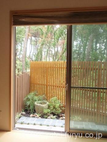 和室から見た坪庭