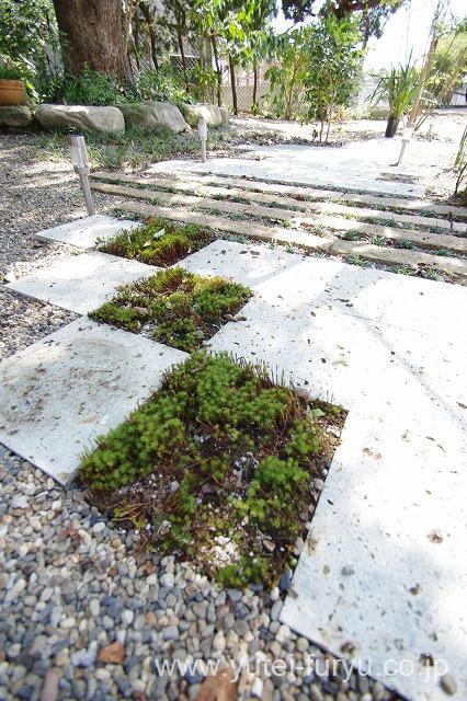 大谷石と苔の和風の庭