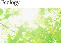 1. 人と自然へのやさしさとエコ素材にこだわります
